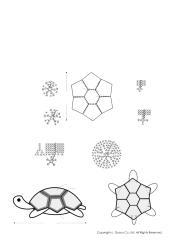 turtle.pdf